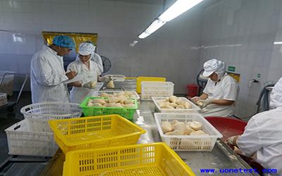 食品第三方检测机构排名,食品第三方检测机构资质